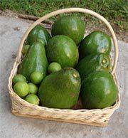 Buying Organic Avocados