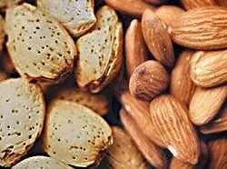 Nuts Fight Diabetes
