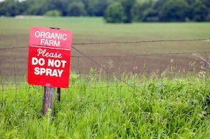 Organic Farm without Pesticides