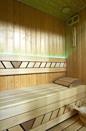 Far-Infrared Saunas