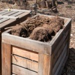 10 Reasons to Start Composting
