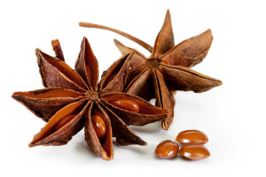 Star Anise: The Secret Ingredient in Tamiflu