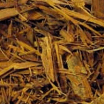 What are the Benefits of Catuaba Bark?