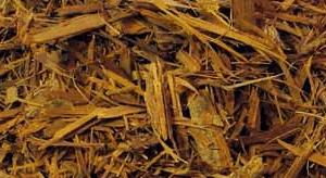 Benefits of Catuaba Bark