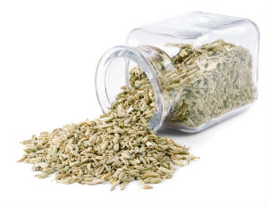 The Weight Loss Benefits of Fennel Seed Essential Oil