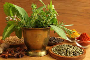 oregano and other herbs