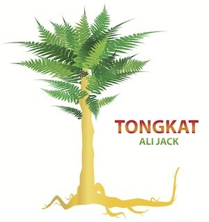 Tongkat ali benefits for male