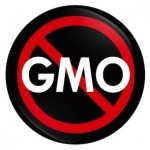 What are Genetically Modified Organisms?