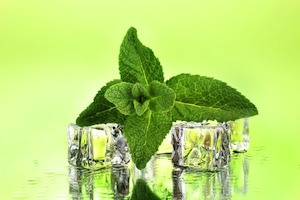 Peppermint for Fresh Breath