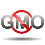 The Top 20 GMO Foods and Ingredients to Avoid
