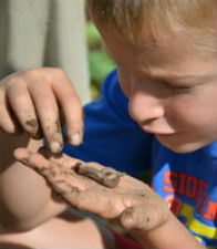 child playing with earthworms