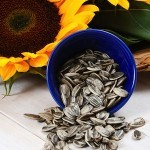 5 Health Benefits of Sunflower Seeds