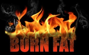 Burn fat michigan.com