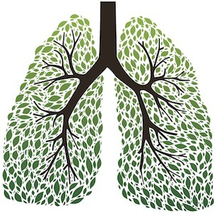 Healthy Lungs!