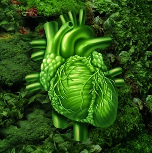 Dark leafy green vegetables are a great source of folate.