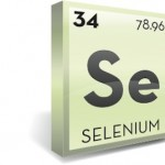 The 7 Best Vegetarian Foods for Selenium