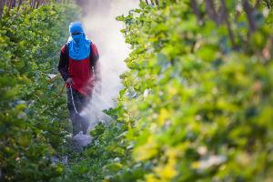 pesticides-petition