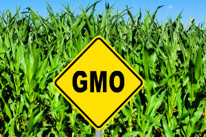 Against GMOs? Make Your Voice Heard!