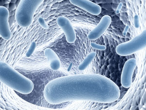 how-silver-combats-harmful-organisms