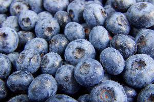 blueberries.jpg (300×199)