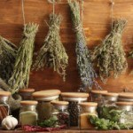 7 of the Best Herbs for Men's Health