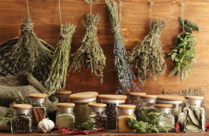 herbs-hanging-to-dry