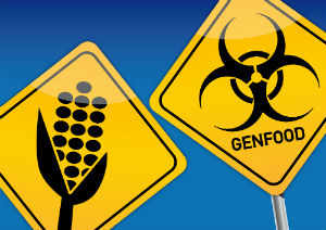 yellow-signs-GMO