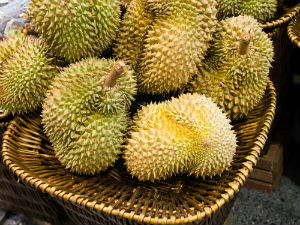 durian-in-a-basket