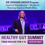 Join Me for the 2015 Healthy Gut Summit!