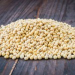 How Soy Affects Reproductive Health