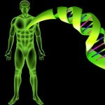 New Innovation in Telomere Extension