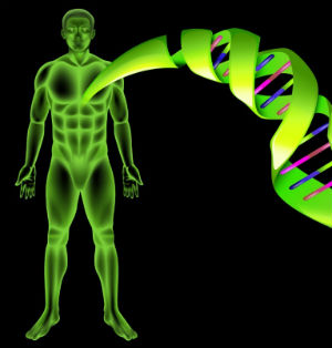 animation-of-telomeres-dna