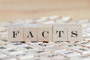 facts-spelling-in-blocks