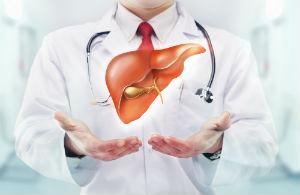 doctor-liver