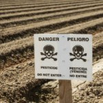 6 Facts About Pesticides That Will Make You Angry
