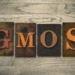 How to Detox GMOs (Video)