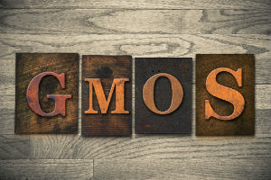 GMO-letters-against-wood