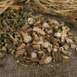What Are the Health Benefits of Inulin?
