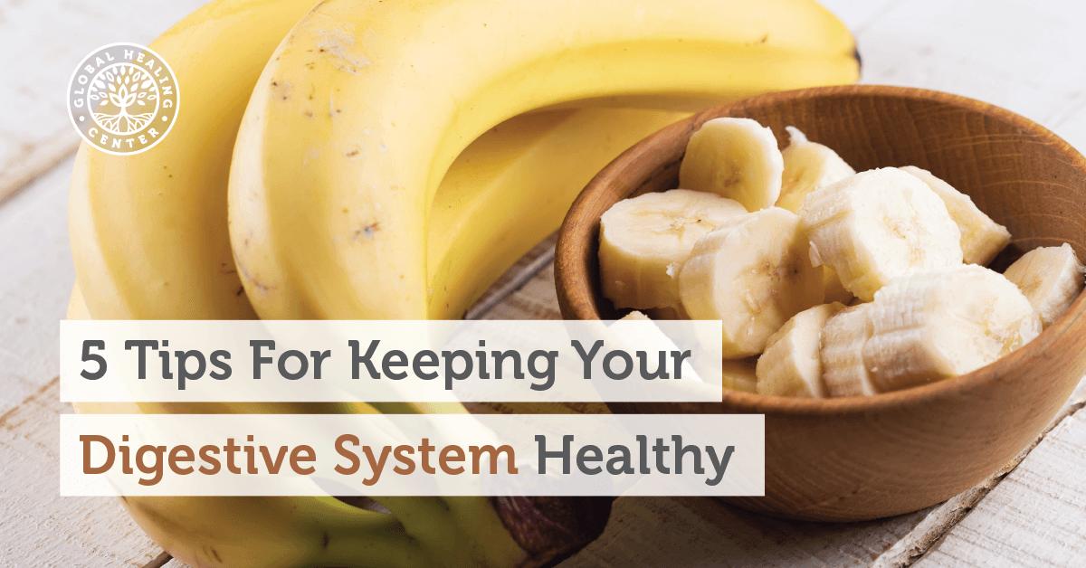 Essay healthy food healthy body