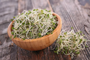 broccoli-sprouts-in-bowl