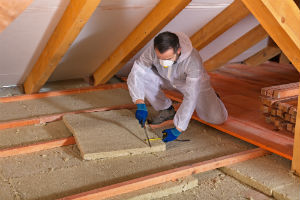 Want Natural Insulation in Your Home? The 3 Best Options