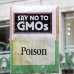 Leading Medical Journal Wants GMO Labeling