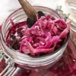 Lactobacillus plantarum: The Health Benefits of Probiotics