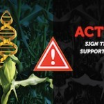 GMO Foods and The Dark Act are Unacceptable! Act Now!