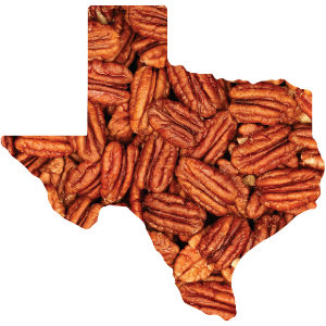 Pecans in the Shape of Texas