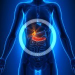 Gallbladder Problems: Disease, Symptoms & Natural Remedies