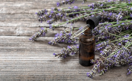 Lavender oil has traditionally been used for aromatherapy, topical application, and dietary supplementation for its health supporting properties.