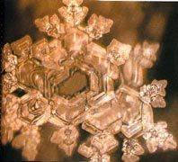 A structured water molecule after being exposed to Bach's 'Air For the G String'. From 'The Message From Water' by Masaru Emoto.
