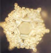 A structured water molecule after exposure to positive language phrase: 'Love and Appreciation.' From 'The Message From Water' by Masaru Emoto.