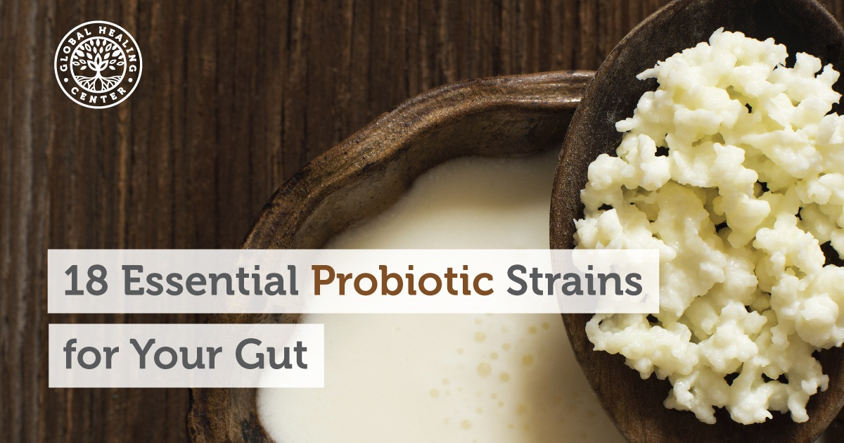 The 18 Best Probiotic Strains for Your Gut